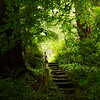 Lead you down the garden path.....