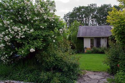 20100524 Garden_1057 smug