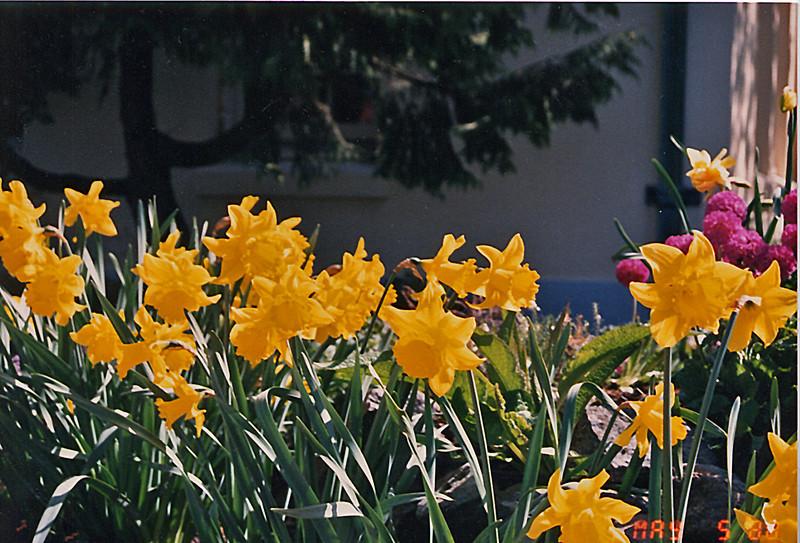 1988-4