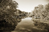 Sabine River Near Big Sandy Texas Photograph Fine Art Print 4089.01