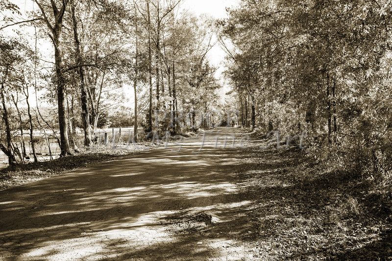 Sabine River Near Big Sandy Texas Photograph Fine Art Print 4105.01