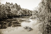 Sabine River Near Big Sandy Texas Photograph Fine Art Print 4081.01