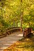 Footbridge in Autumn