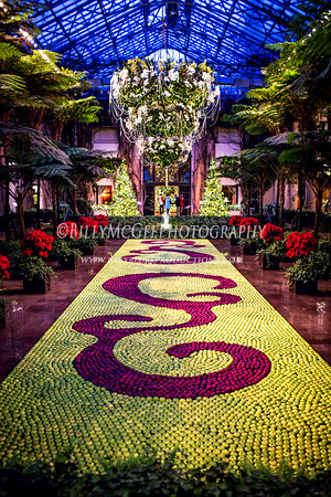 Longwood Gardens Christmas Theme - 05 Jan 2014