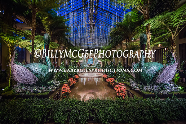 Longwood Gardens Christmas Theme - 20 Dec 2014