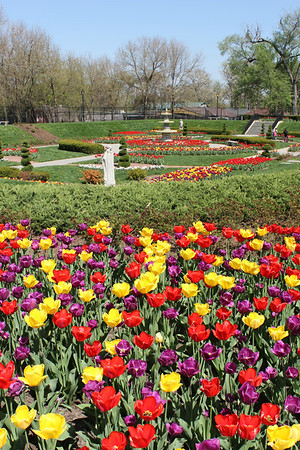 Phillips Park, Aurora, Illinois - Spring - 2013