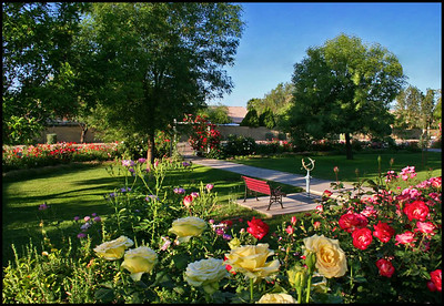 Schoenberg front garden