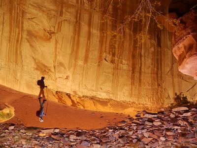 Cave Walker