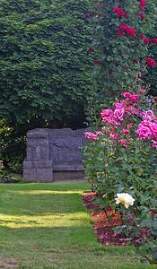 Portland Rose Garden 2 (62769012)