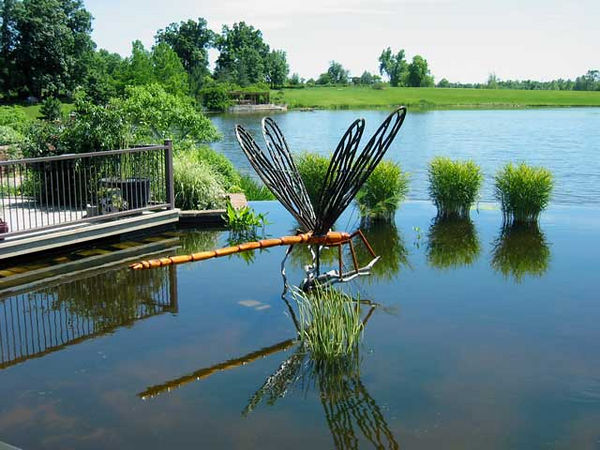 "This giant dragonfly was part of the ""Big Bugs"" exhibit.<br /> It is anchored in the garden pond that flows into the lake."