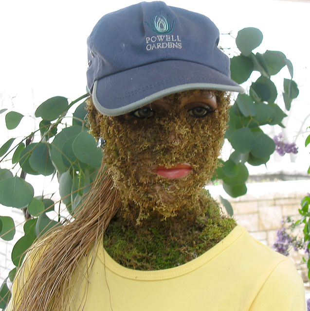 Moss woman.<br /> Part of the Moss family exhibit in the conservatory.