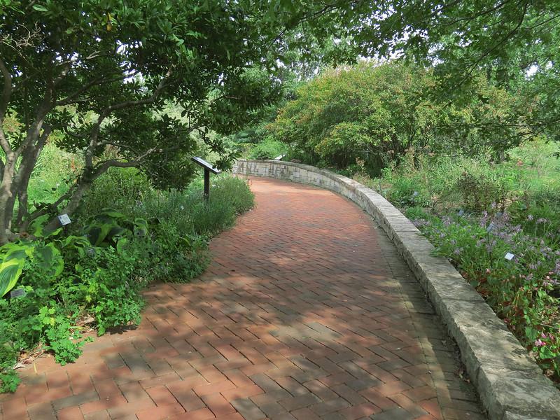 Brick path in the Perennial Garden.