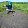 Globe/T. Rob Brown<br /> Dana Hoisington, interpretive resource specialist with Missouri State Parks, looks at a small hole that is likely to be the home of a prairie crayfish at Prairie State Park near Liberal.