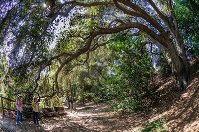 2012-03-14 Rancho Santa Ana BG-7980