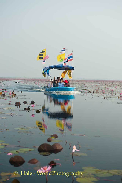 Touring The Red Lotus Sea
