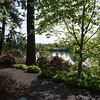Rhododendron garden-0744