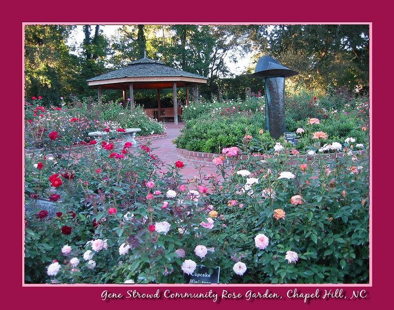 Gene Strowd Community Rose Garden - gazebo and fountain [borders, text with drop shadow]