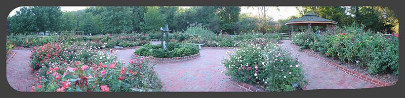 Gene Strowd Community Rose Garden, Chapel Hill [panoramic - 6 shots]