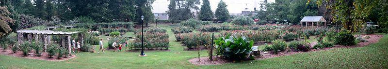 20041003 Raleigh Rose Garden [panoramic]