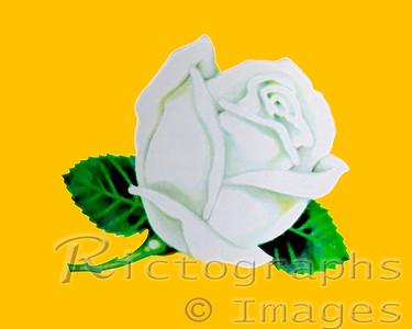 Digital Art, Rictographs Images Designs, Decor