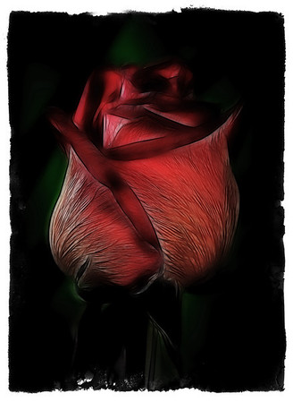 Abstract of a Rose