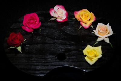 Miniature Rose Palatte