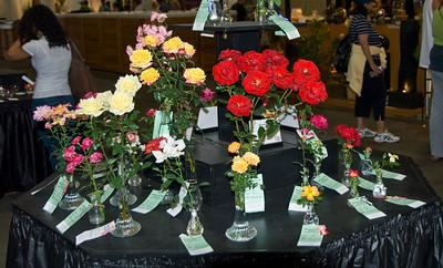 Del Mar Fair Roses06140903