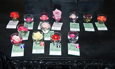 Del Mar Fair Roses06140901