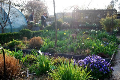 kweekbedden in de lente
