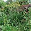 warme kleuren border met Calamagrostis brachytricha