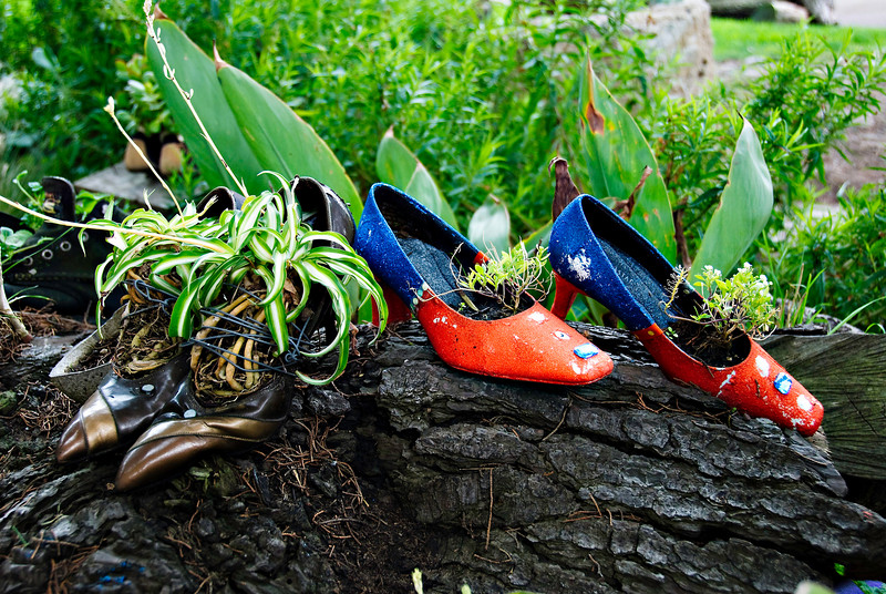 """Planted Pumps"" - Planted shoes in a park in San Francisco"