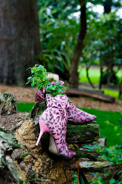 pink shoes on trees