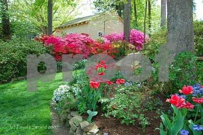 Sisters Garden 2007