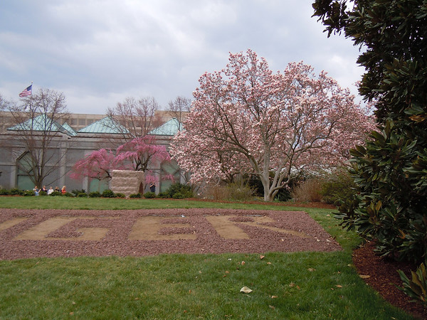 Smithsonian garden April 2013