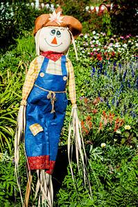 11-02-12 South Coast Botanic Garden-9649
