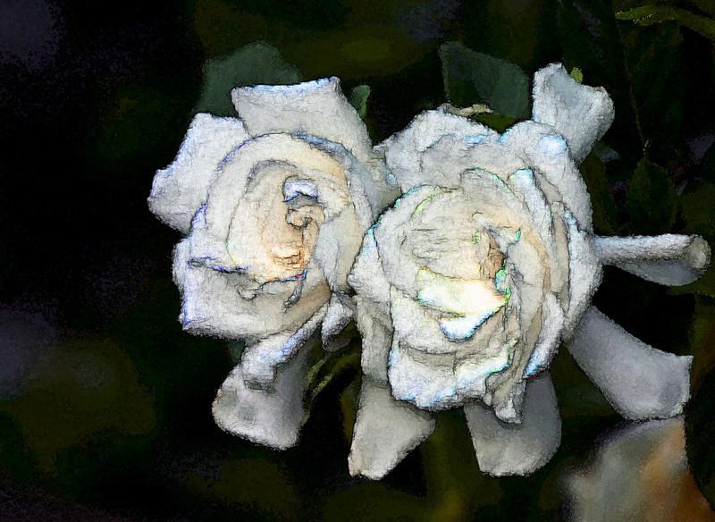 Gardenia Watercolor_00