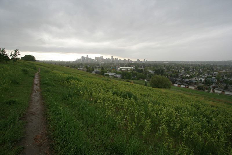 View of Calgary from the top of the park