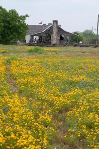 Old Baylor Park, west of Independence, TX.