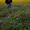 Myra takes a closer look at the flowers near Brenham, TX