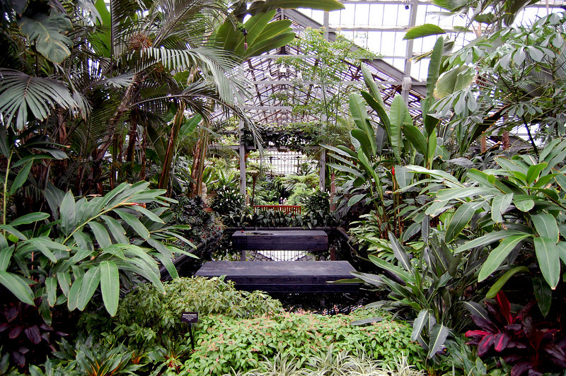 Entrance area of Garfield Park Conservatory in Chicago, Il.