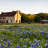 Texas Bluebonnet House 0419a