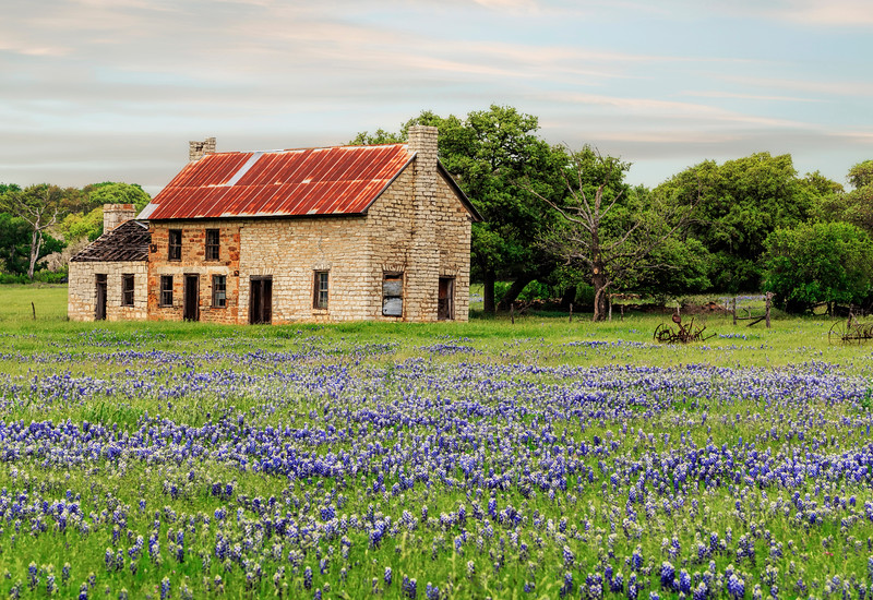 Bluebonnet House