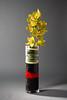 BLACK RUBIES - Orchid Arrangement