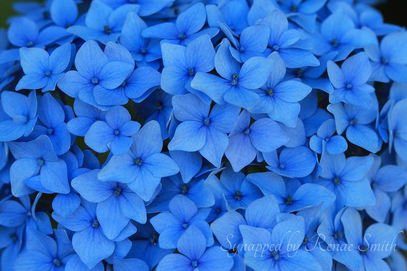 Mood of Blue