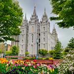 Mormon Temple in Salt Lake City, Utah with beautiful Spring Flowers