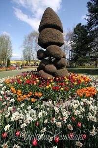 Tulips0411(edit)_0019