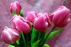 My Valentine Flowers