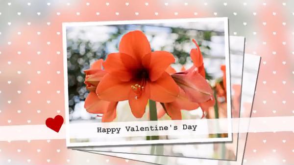 Valentine's Day_2014