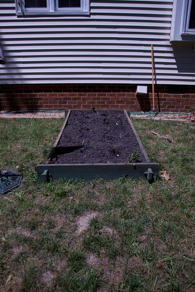 Vegetable Garden - 2010