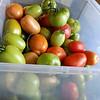 2014 Vegetable Garden-09152014-090905(f).jpg